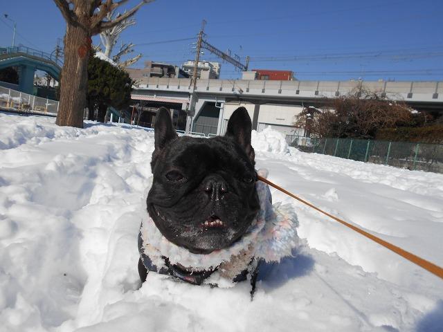 180122~23大雪⑳3