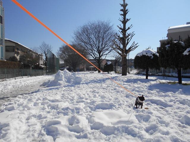 180122~23大雪⑳4
