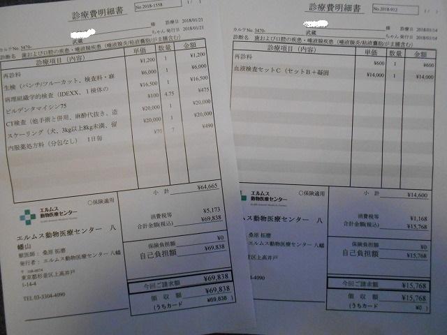 180121武蔵CT&内視鏡⑬