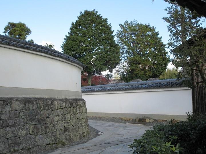 527-4.jpg