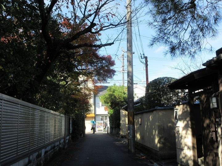 528-6.jpg