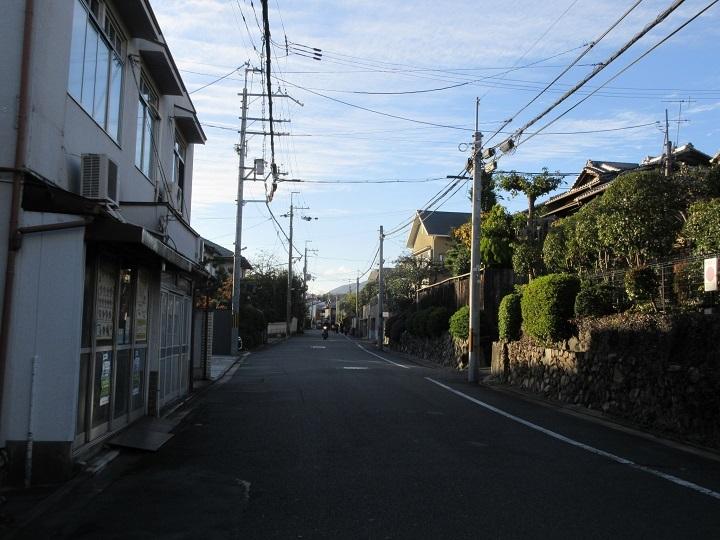 531-2.jpg