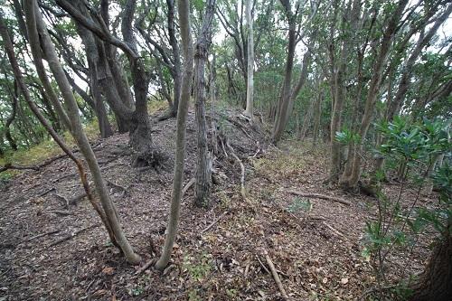 tennjiyama (6)