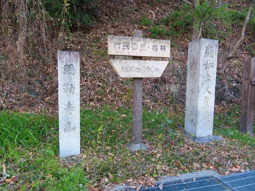 mirokuji (1)