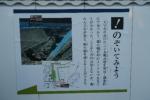 駿府城公園11