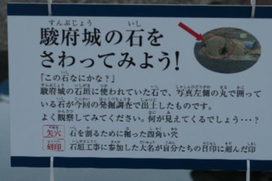 sizuoka_2_0257.jpg