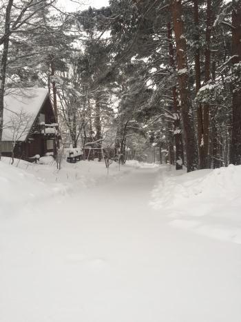2018-01-03-1.jpg