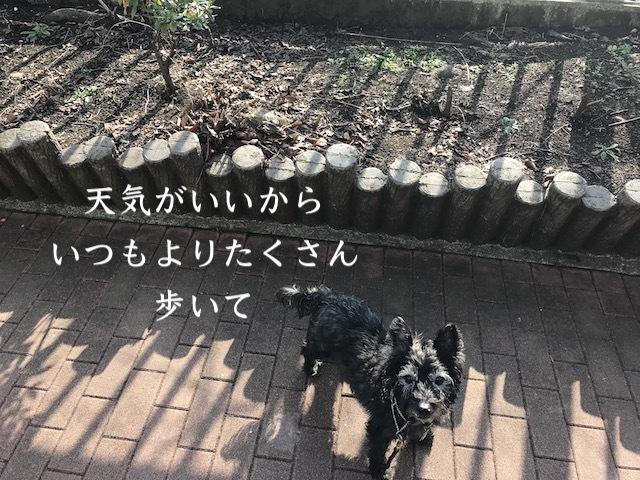 2018-01-20_12-04-27_658.jpg