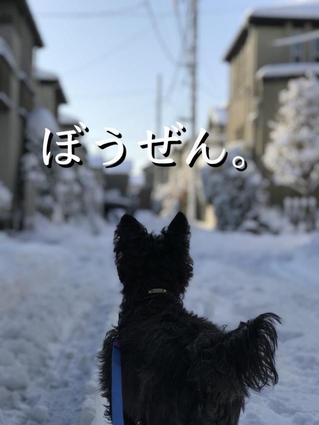 2018-01-23_08-59-51_373.jpg