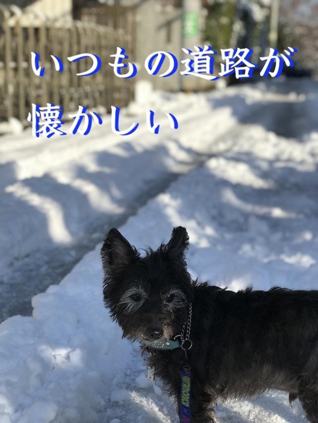 2018-01-23_09-02-37_255.jpg