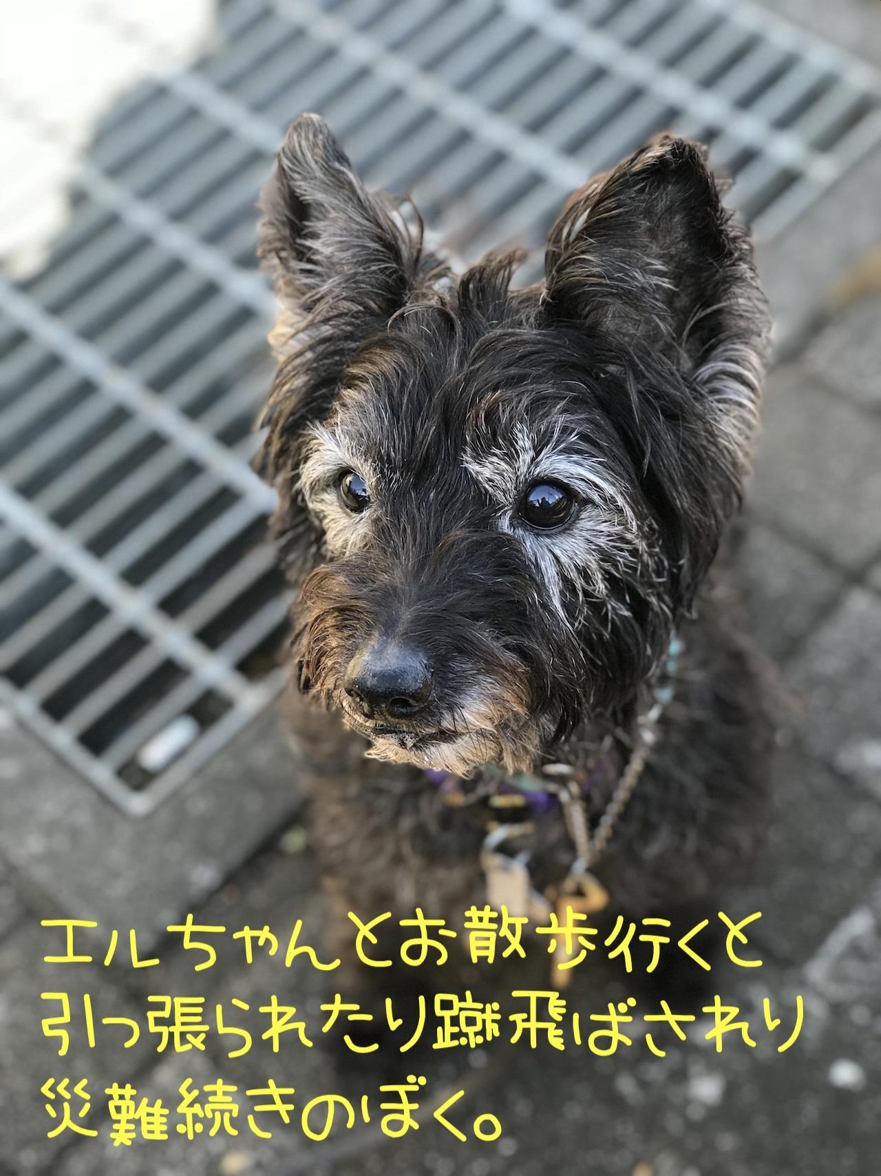 2018-02-06_09-31-27_954.jpg