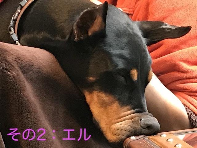 2018-02-25_15-58-34_476.jpg