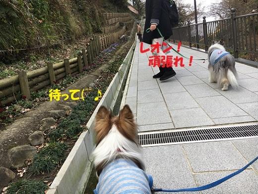 鎌倉090