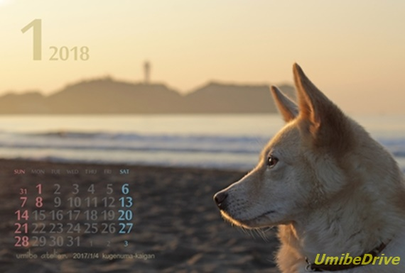 201801 新春めぐ江の島【明るめ】【小】
