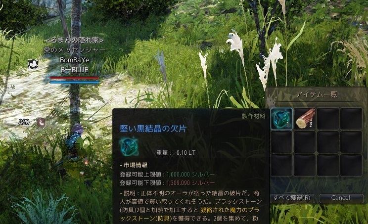 木こりDE固い02