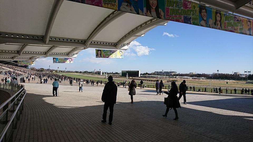 みっつんIN東京競馬場