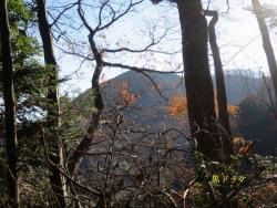 左の尾根(関東ふれあい道の黒ドッケ