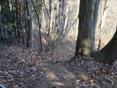 小下林道へ
