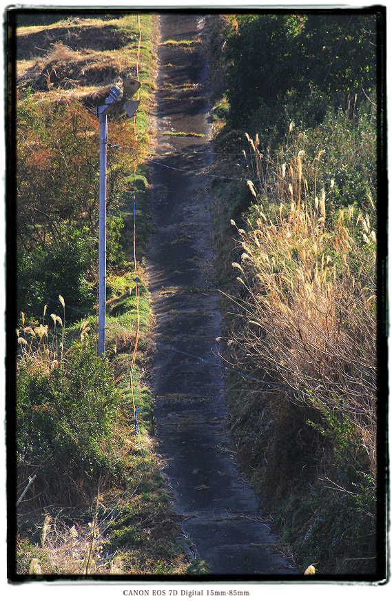 すごい激坂1701hill201.jpg