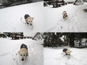2014-0214-雪の日に公園で02