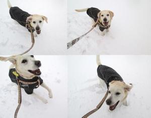 2014-0214-雪の日に-お母さん楽しいね!