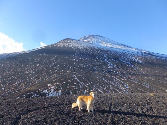 2018.1.2富士山(双子山) 110