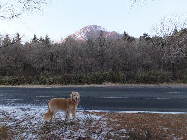 2018.1.2富士山(双子山) 176