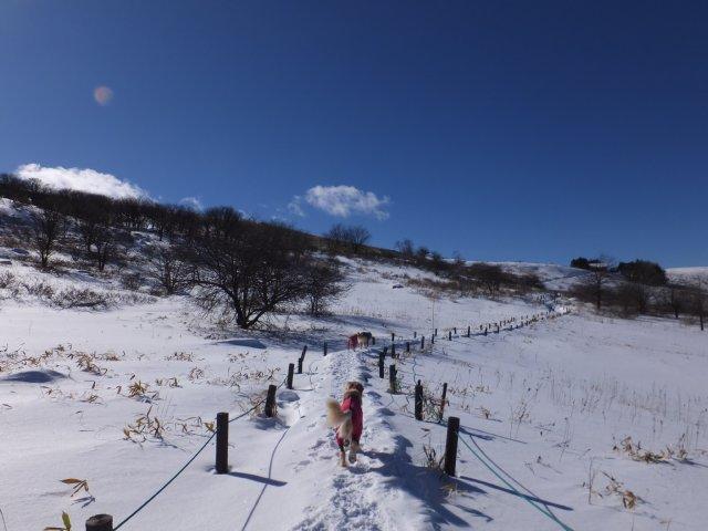 2018.1.3霧ヶ峰高原 059