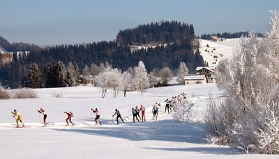 400px-Cross-country_skiing_Schwedentritt.jpg
