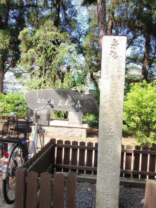 立木神社10