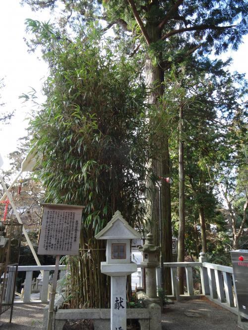 田村神社10