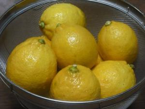 180121いただいたレモン