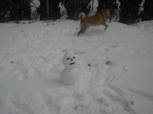 180126雪だるま無視してカボチャで遊ぶ