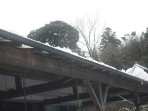 180127雪おろし1