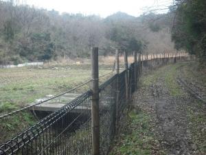 180129家の裏から続くイノシシの柵