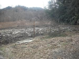 180129数枚柵ができたところ
