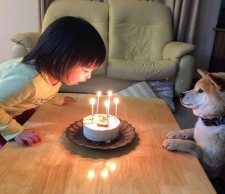エイトのバースデーケーキのロウソクを吹く娘と見守るエイト