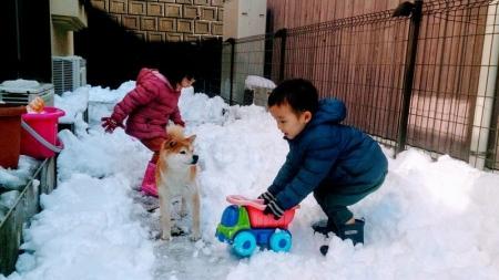 大雪を楽しむ双子とエイト