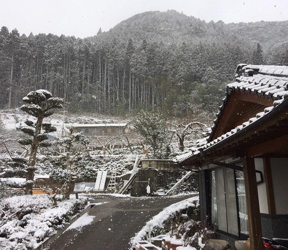 2018冬景色