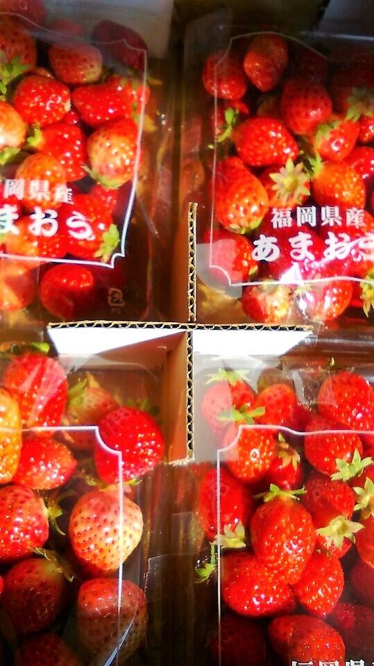 0217苺-1