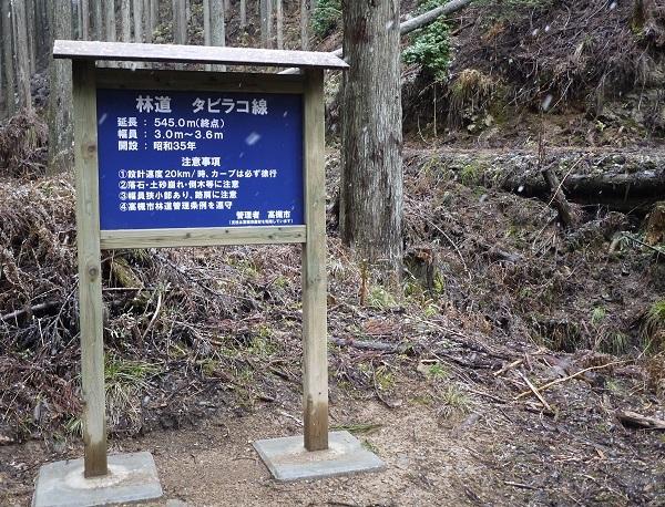 高槻林道-1802-018b