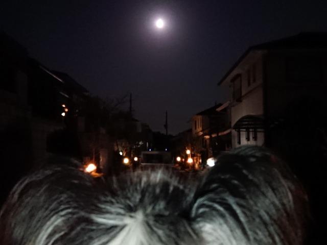 皆既月食-1