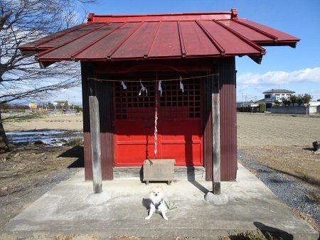 調節池から神社まで