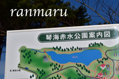 まるちゃん2018013102