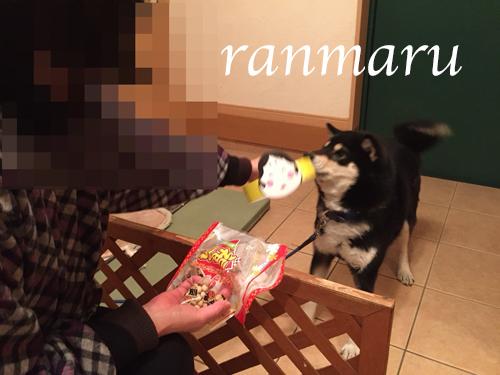 まるちゃん2018020504