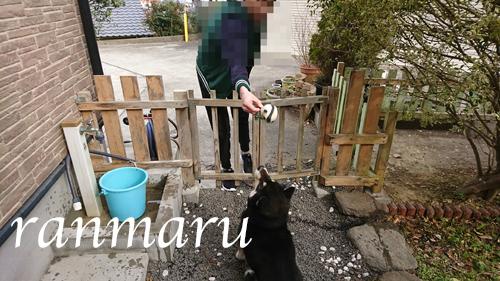まるちゃん2018021401
