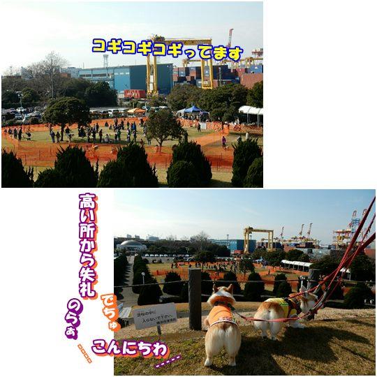 20180124-4.jpg
