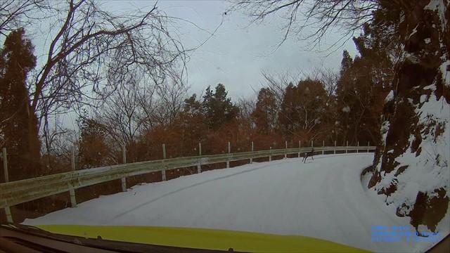 雪の英彦山-6