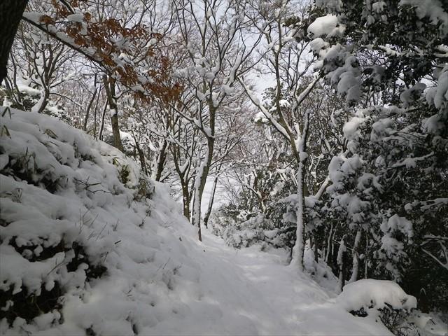 雪の英彦山ドライブ-3