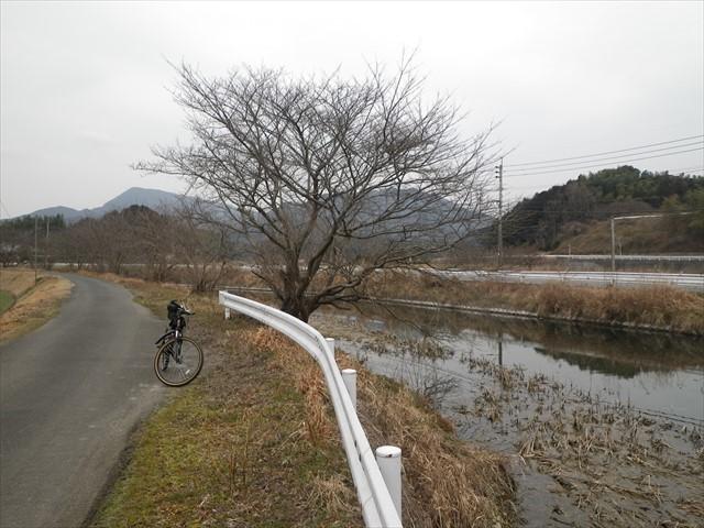 サイクリング-1